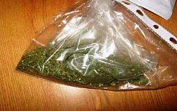 Криворожские полицейские задержали мужчину с пакетом конопли