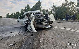 Полиция разыскивает свидетелей смертельного ДТП на Никопольском шоссе в Кривом Роге