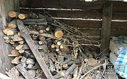 Ночью в Кривом Роге сгорел сарай с дровами