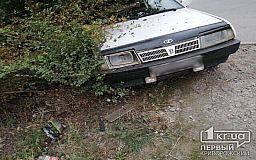 В Кривом Роге мужчина убегал от копов и вылетел на авто в кусты