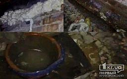 С 2016 года стояли первыми в очереди на ремонт кровли, но крышу так и не отремонтировали, - криворожане