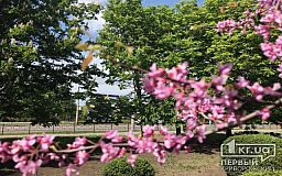 Погода в Кривом Роге и гороскоп на 5 мая