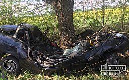Не справился с управлением и врезался в дерево: на Днепропетровщине в результате ДТП погиб мужчина