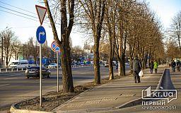 Обустроить все пешеходные переходы в Кривом Роге съездами для колясок, - петиция
