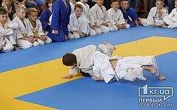 Малыши-крепыши с разных городов  Украины поборолись за медали Всеукраинского турнира по дзюдо в Кривом Роге