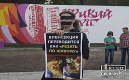 Криворожане во время Еврофеста протестовали против убийств животных