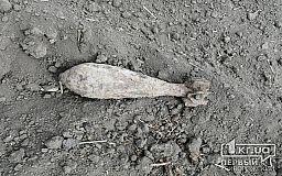 Во время работ на поле житель Криворожского района обнаружил мину