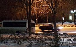 В Кривом Роге маршрутное такси врезалось в дерево