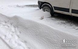 У полицейских и медиков нет претензий по снегоборьбе в Кривом Роге, - заявление