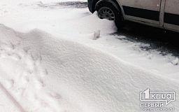 На трассе Кривой Рог-Николаев спасатели помогли автомобилисту выбраться из снежного заноса