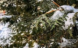 Погода в Кривом Роге и астрологический прогноз для горожан на 18 января