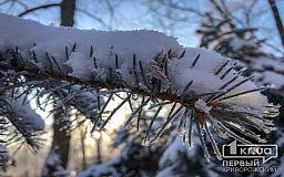 Снегопады и туман: в Днепропетровской области объявлено штормовое предупреждение