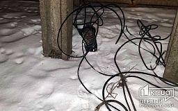 Криворожанин задержал мужчин, которые украли 800 метров кабеля