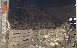На криворожском предприятии обнаружили незаконный склад древесины