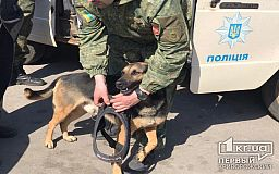 За неудачную шутку правоохранители задержали в Кривом Роге «подрывника»