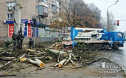 На одном из перекрестков в Кривом Роге ограничено движение из-за обрезки деревьев