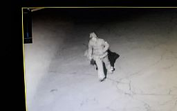 Ночью неизвестная вырвала можжевельник, посаженный детьми на школьной клумбе