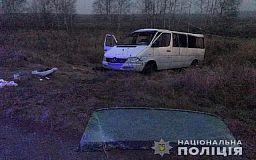 В ДТП в Житомирской области пострадали 7 криворожан, - свидетели