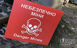 Житель Пятихатского района собирал дрова, а обнаружил почти сотню боеприпасов