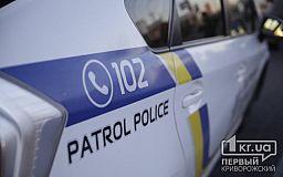 Криворожанин, укусивший и ударивший полицейского, проведет в тюрьме 2 года