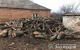 Трое криворожан задержаны по подозрению в незаконной вырубке леса