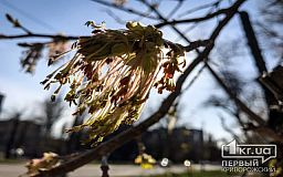 Прогноз погоды на 29 марта в Кривом Роге