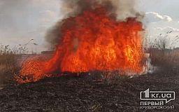 52 пожара из-за поджигания сухостоя и мусора случилось в Кривом Роге с начала года