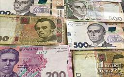 Криворожский райсовет выделит деньги на поддержку организации депутатки городского совета