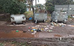 На сбор мусора в Долгинцевском районе Кривого Рога потратят 2 миллиона гривен