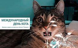 17 февраля - День спонтанного проявления доброты и Международный день кота