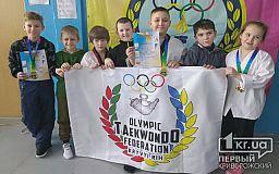 Криворожане завоевали 10 медалей на областном турнире по тхэквондо