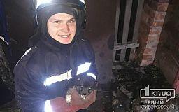 В Кривом Роге пожарные спасли щенка