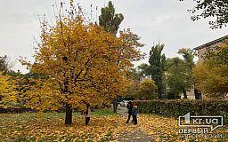 Погода в Кривом Роге 14 октября