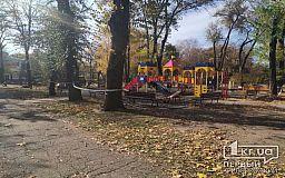 Возле детской площадки, где на ребенка упала ветка, начали обрезку, - криворожанин