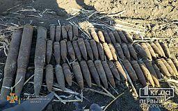 В Криворожском районе нашли 55 устаревших артснарядов