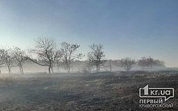 В Кривом Роге и районе 7 раз за сутки горела сухая трава общей площадью 20 гектаров