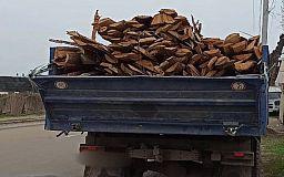 В Кривом Роге патрульные остановили водителя фуры, загруженной древесиной