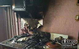 В Кривом Роге в квартире в результате пожара сгорела бытовая техника