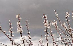 Прогноз погоды 28 апреля в Кривом Роге
