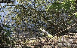 Несанкционированный водоотвод в реку зафиксировали в Кривом Роге