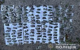 Полицейские Кривого Рога изъяли у местного жителя почти 450 слип-пакетов с каннабисом