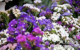 Обзор цен на цветы в Кривом Роге