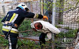 В Пятихатках пожарные достали мужчину, застрявшего в заборе