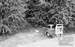 Криворожанка, которая тащила дочь по земле, заплатит штраф
