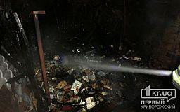 В Кривом Роге сгорело хозяйственное сооружение