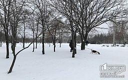 Как выглядит Кривой Рог в первый день снегопада