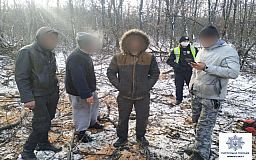 Четверо криворожан спиливали деревья возле парка в Кривом Роге