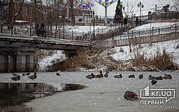 Погода в Кривом Роге 21 января