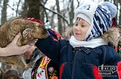 Харьковский сурок Тимка предсказал раннюю, но прохладную весну