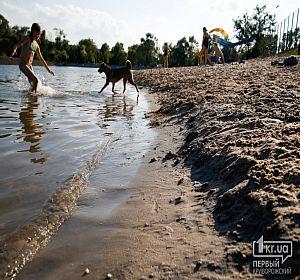Состояние пляжей  Кривого Рога 2020